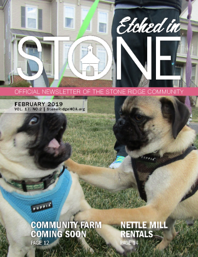 February 2019 – Etched in Stone Newsletter